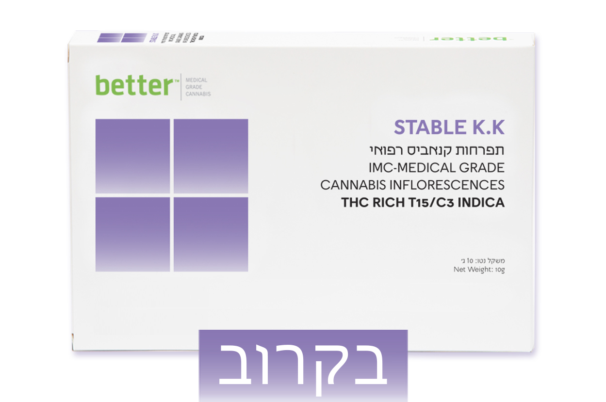 STABLE K.K T15/C3