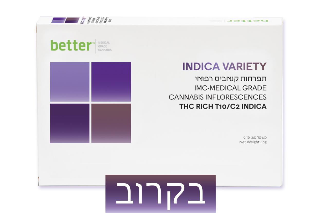 INDICA VARIETY T10/C10