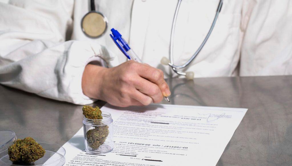רישיון לקנאביס רפואי. המדריך